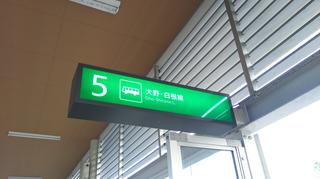 新潟市BRT市役所前5番線サイン