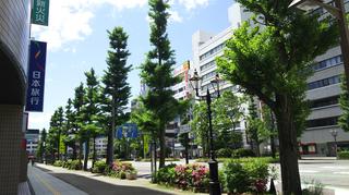 新潟駅前東大通り