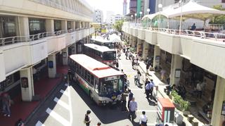 busfestival1.jpg