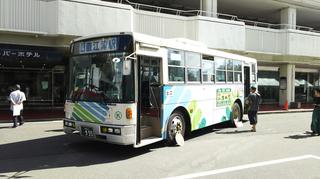 busfestival22.jpg