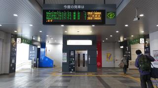 galayuzawa14.jpg
