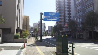 nishibori11.jpg