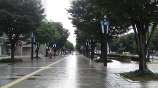 toyamacity45.jpg