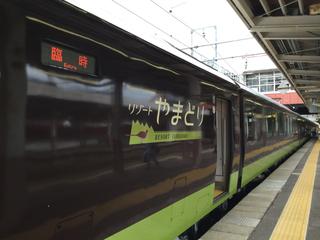 485kei-resortyamadori2.jpg