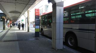 BRT-honcho1.jpg