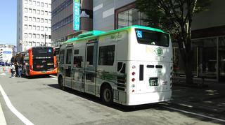 busfestival11.jpg