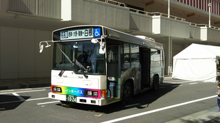 busfestival13.jpg