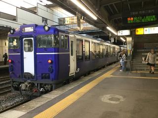 koshino-shukura3-1.jpg