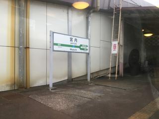 koshino-shukura3-3.jpg