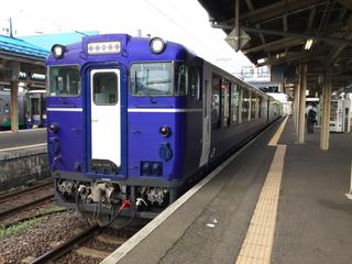 naoetsusta-koshinoshukura-1.jpg
