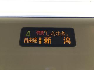 naoetsusta-shirayuki-3.jpg