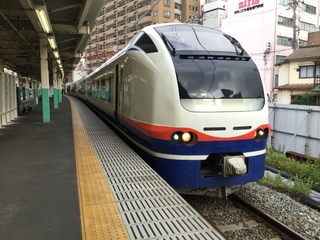 niigatasta-E653-shirayuki-3.jpg