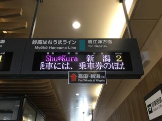 ryutoshukura3.jpg