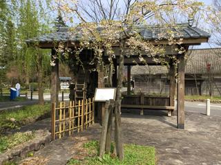 shimoseki11.jpg