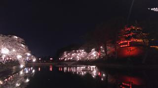 takadayozakura2021-16.jpg