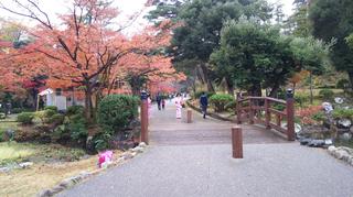 yahiko-kouyou2019-4.jpg