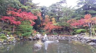 yahiko-kouyou2019-5.jpg