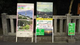 yahikoyama1.jpg