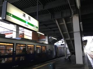 yuzawashukura19.jpg