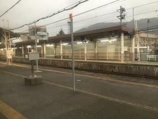 yuzawashukura31.jpg